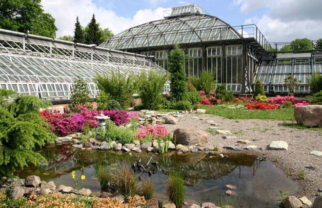 Цікаве в Берліні: сад