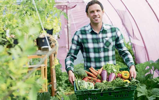 Робота по збору овочів у Фінляндії