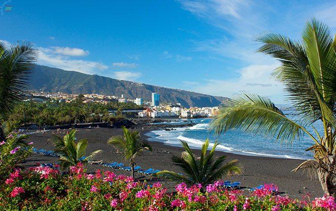 Тенеріфе і канарські острови
